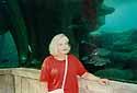 Nassau/Bahamas - at the aquarium
