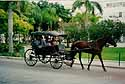 care to take a ride? (Nassau/Bahamas)