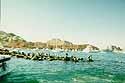 harbor of Cabos San Lucas