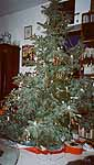 christmas 2002 - in my brother;s living room