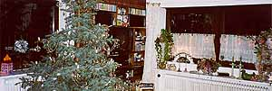 christmas 2002 - in my brother's living room