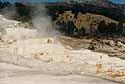 Yellowstone Park - Mammoth Springs